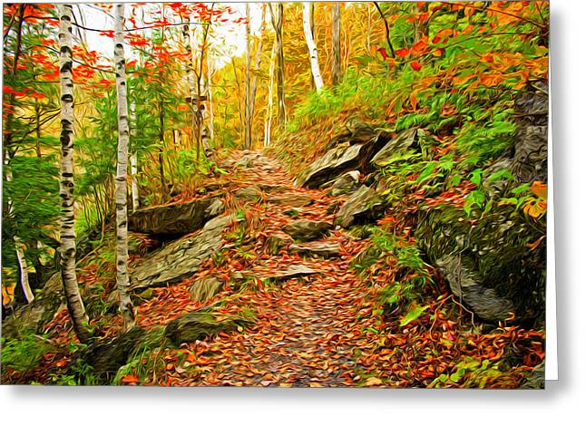 Stepping Stones Greeting Card by Bill Howard