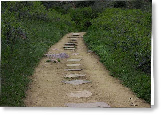 Steps Through Nature Greeting Card by Missy Boone