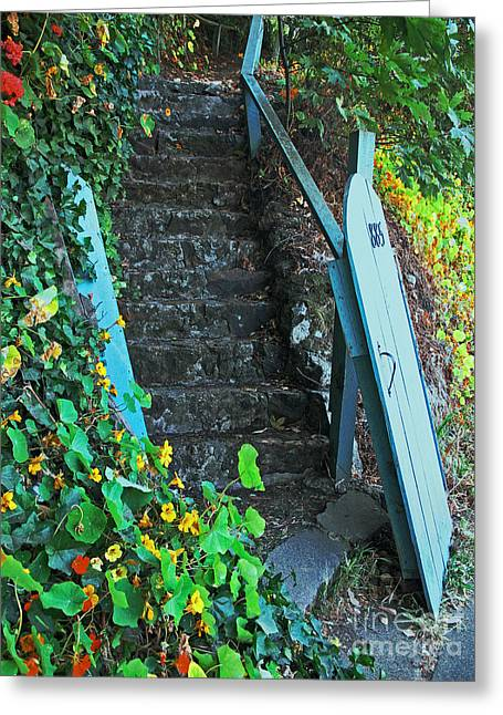 Steps To Somewhere Greeting Card by Connie Fox
