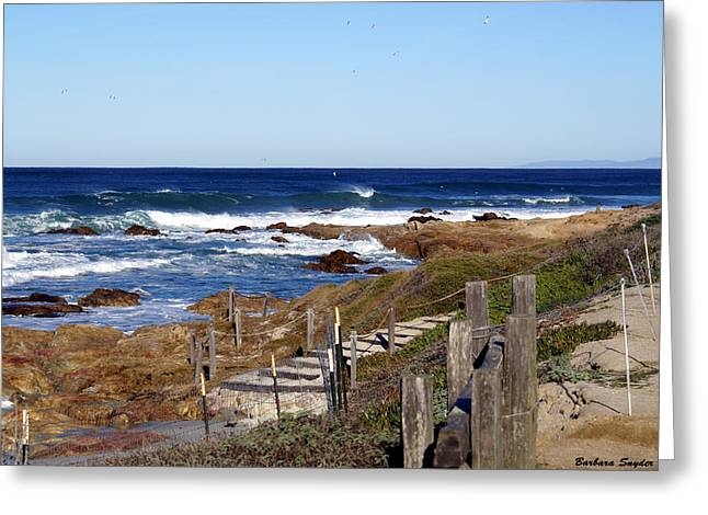 Steps To The Sea Greeting Card by Barbara Snyder