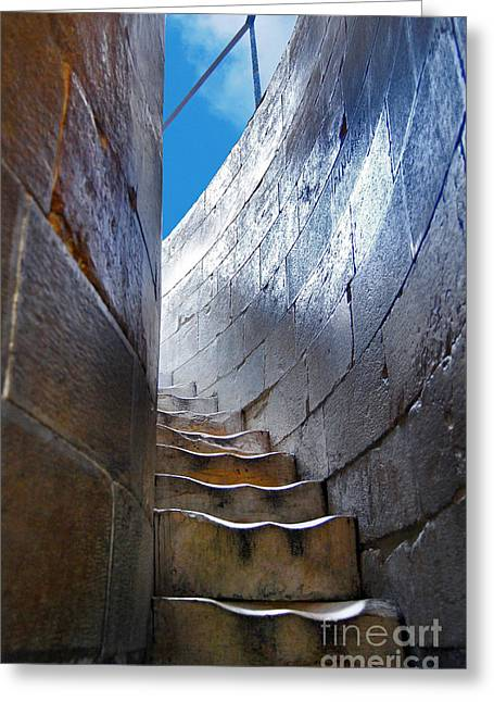 Steps To The Top Of The Leaning Tower Of Pisa - Toscana - Italia Greeting Card by Carlos Alkmin