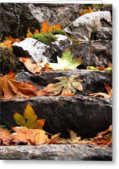 Steps Toward Autumn - Leaves Greeting Card