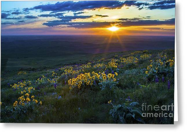 Steptoe Sunset Greeting Card by Sonya Lang