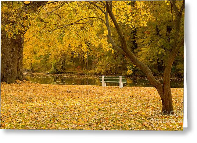 Stewart Park Ithaca Greeting Card