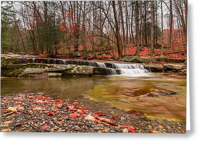 Stickney Brook 1 Greeting Card