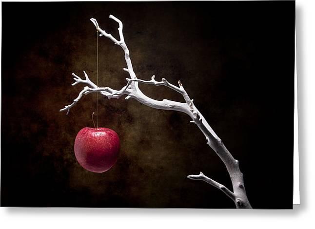 Still Life Apple Tree Greeting Card by Tom Mc Nemar