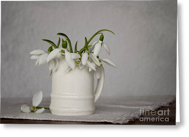 Still Life With Snowdrops Greeting Card by Diana Kraleva