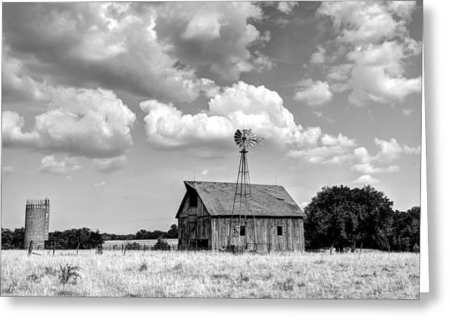 Still Standing Proud Greeting Card by Jean Hutchison