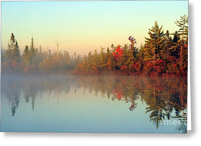 Still Water Marsh Greeting Card