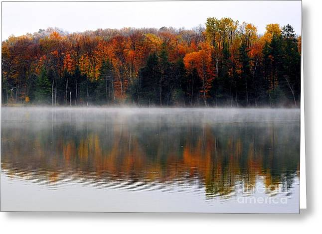 Still Waters Greeting Card by Terri Gostola