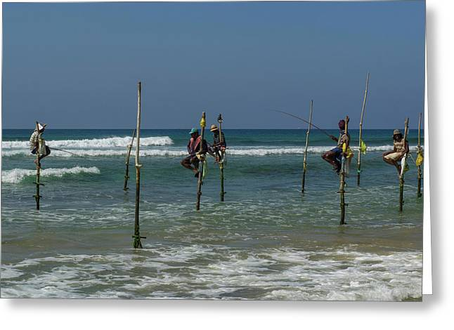 Stilt Fishermen On Beach, Galle Greeting Card by Panoramic Images