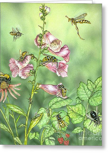 Stinging Insects In Garden Scene Greeting Card