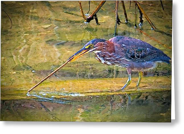 Stirring The Waters Greeting Card