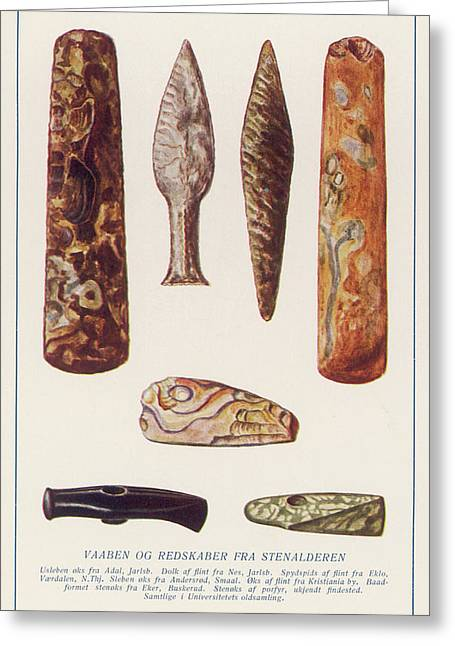 Stone Age Artifacts From Norway - Tools Greeting Card by Mary Evans Picture Library