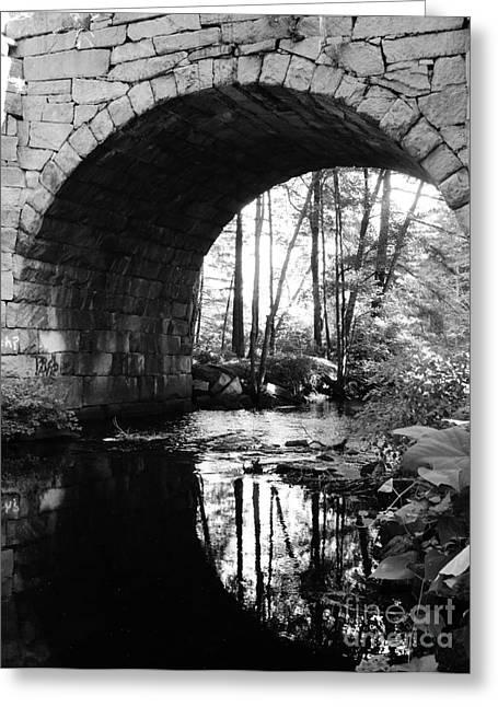 Stone Arch Bridge 2 Greeting Card by Barbara Bardzik