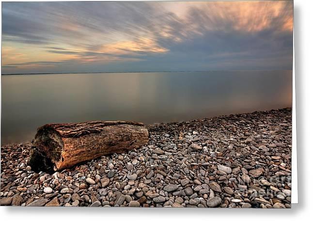 Stone Beach Greeting Card by James Dean