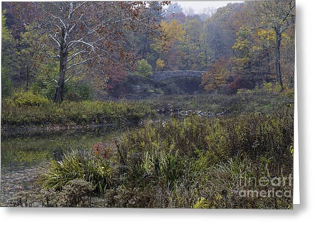 Stone Bridge In Autumn I Greeting Card by Michele Steffey