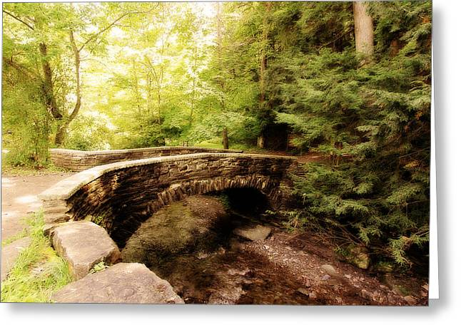 Stone Bridge  Greeting Card by Trina  Ansel