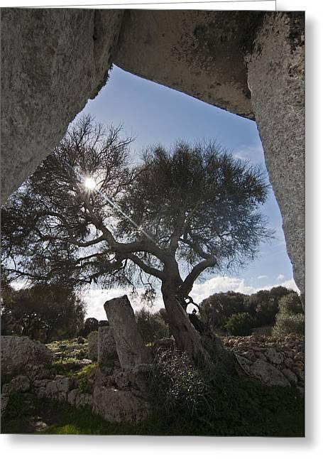 Talayotic Culture In Minorca Island - Stone Bridge Under Winter Sun Greeting Card