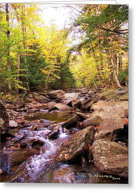 Stone Brook I Greeting Card
