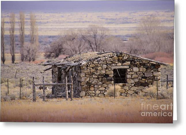 Stone Cabin In The Big Smoky Valley Greeting Card by Janis Knight