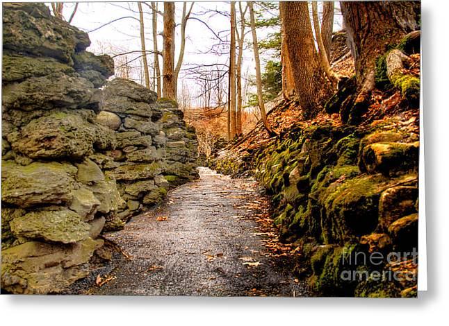 Stone Cold Walkway Greeting Card by Jim Lepard