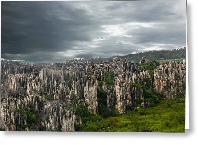 Stone Forest Greeting Card