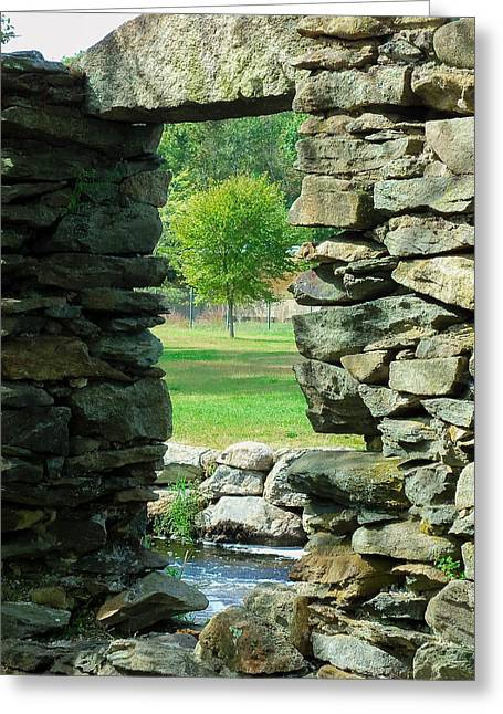 Stone Framed Tree Greeting Card by Heather Sylvia
