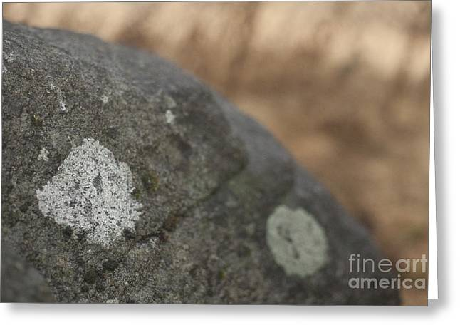 Stone Greeting Card by Graham Foulkes