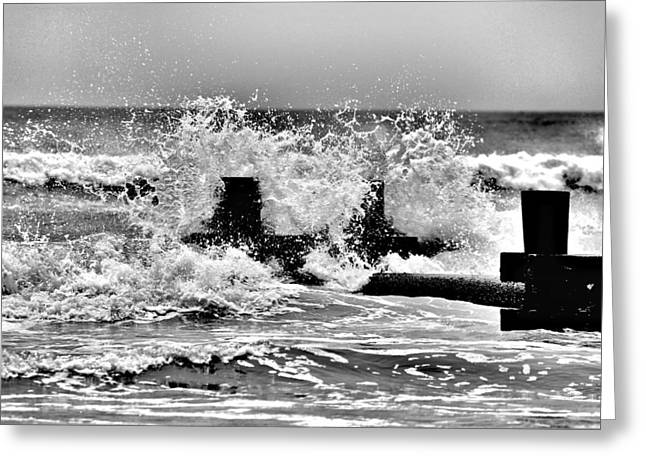 Stone Harbor 211 Greeting Card