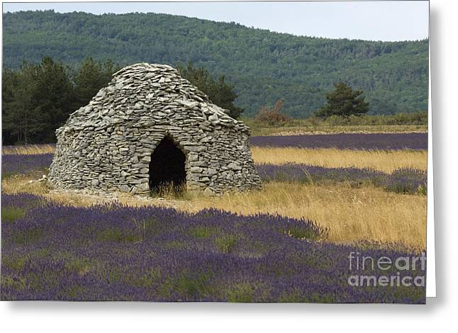Stone Hut And Lavender, France Greeting Card by John Shaw