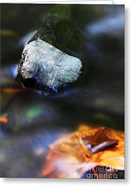 Greeting Card featuring the photograph Stone by Mariusz Czajkowski