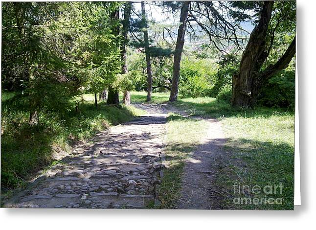 Greeting Card featuring the photograph Stone Path by Ramona Matei
