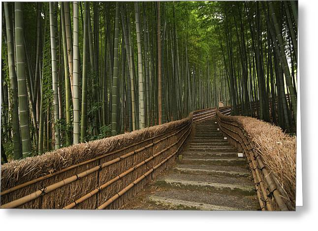 Stone Pathway In Bamboo Forest Greeting Card