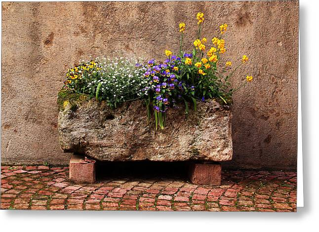 Stone Planter In Kaysersberg France Greeting Card by Greg Matchick