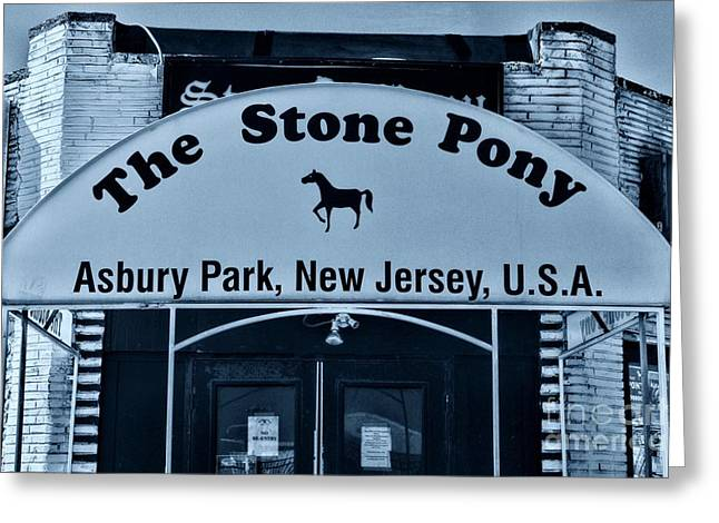 Stone Pony Very Cool Greeting Card by Paul Ward