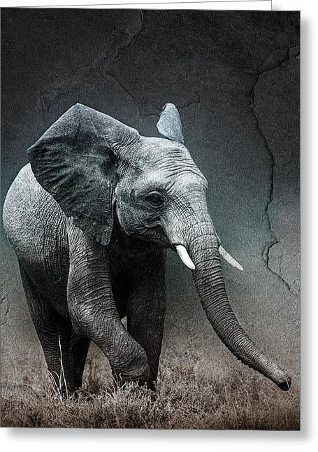 Stone Texture Elephant Greeting Card by Mike Gaudaur