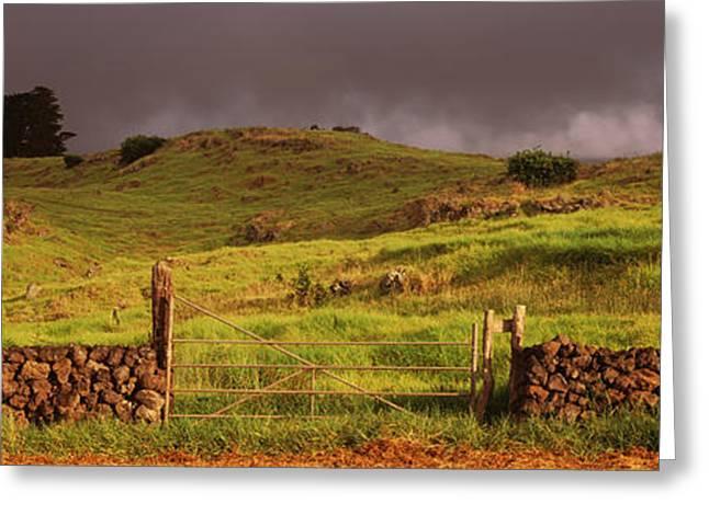 Stone Wall In A Field, Kula, Maui Greeting Card