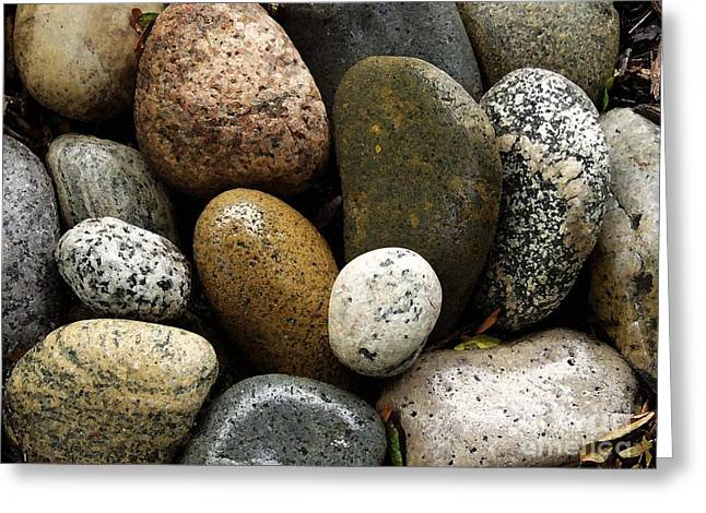 Greeting Card featuring the photograph Stones by Carol Sweetwood