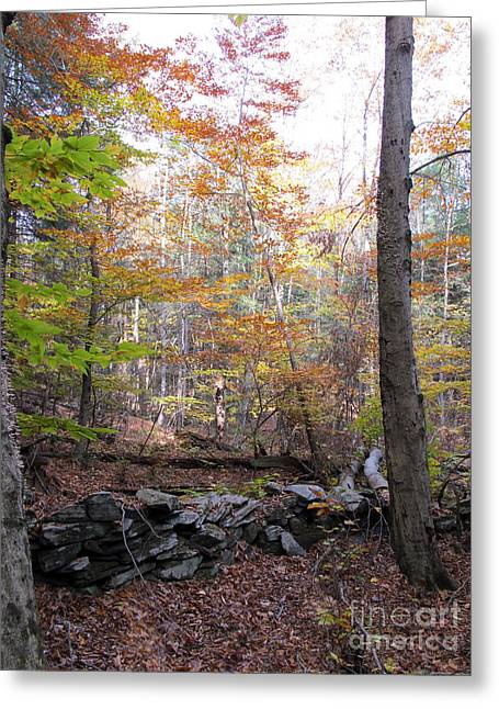 Stonewall In The Woods Greeting Card by Linda Marcille