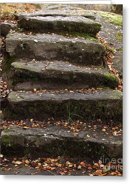 Stony Steps Greeting Card by Lutz Baar