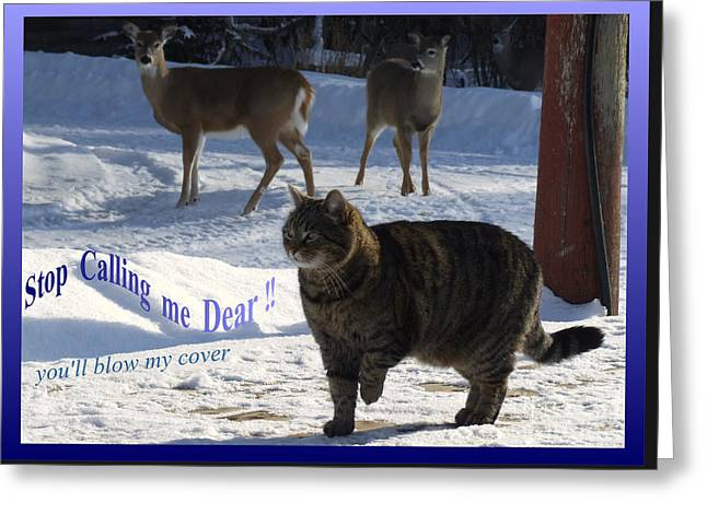 Greeting Card featuring the photograph stop callin me Dear by Marianne NANA Betts