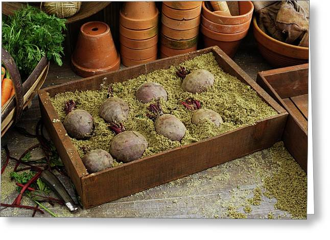 Storing Beetroots In Damp Sand Greeting Card
