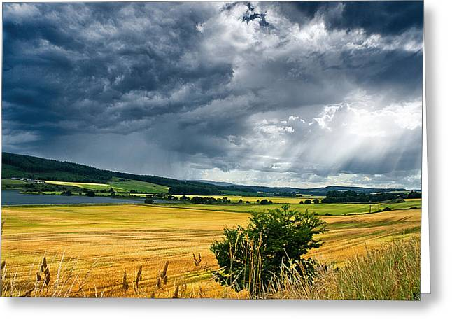 Storm And Sunbeams Greeting Card by Jacqi Elmslie