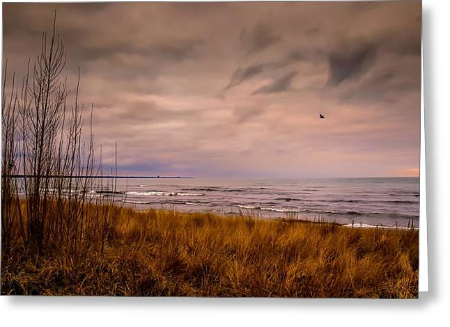 Storm Approaching At Dusk Greeting Card