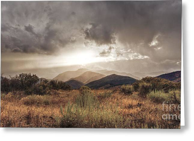 Storm Clouds Greeting Card by Dianne Phelps