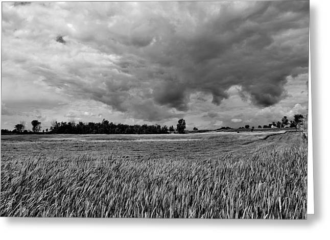Storm Field - Canada Greeting Card