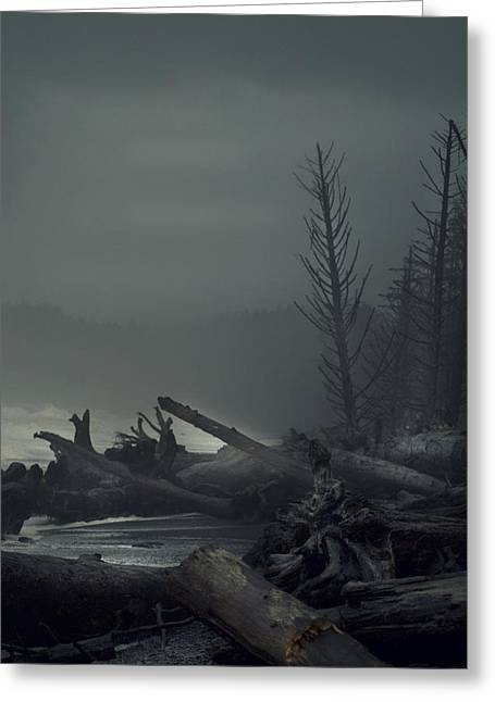 Storm Aftermath Greeting Card