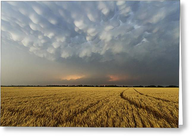 Storm Over Wheat Greeting Card