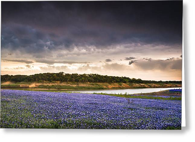 Storm Over Wildflower Field Greeting Card